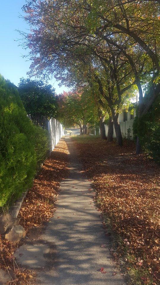 autumnlane
